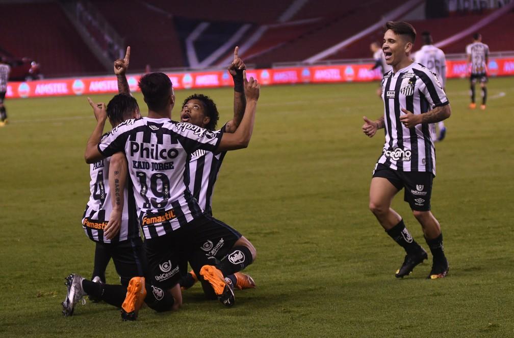 Comemoração do gol de Marinho para o Santos contra a LDU — Foto: Staff images /CONMEBOL