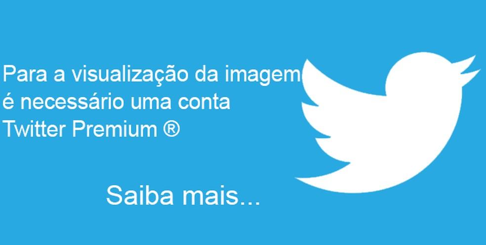 Montagens sobre o Twitter Premium confundiram usuários  — Foto: Reprodução/Twitter