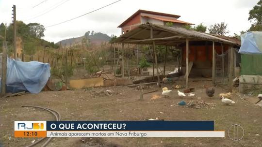 Animais aparecem mortos em sítio e deixam proprietários intrigados em Nova Friburgo, no RJ