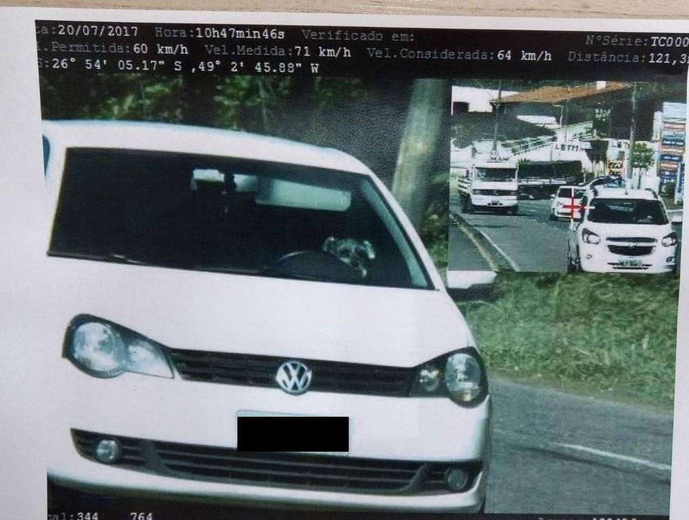 Cachorro é flagrado dirigindo veículo