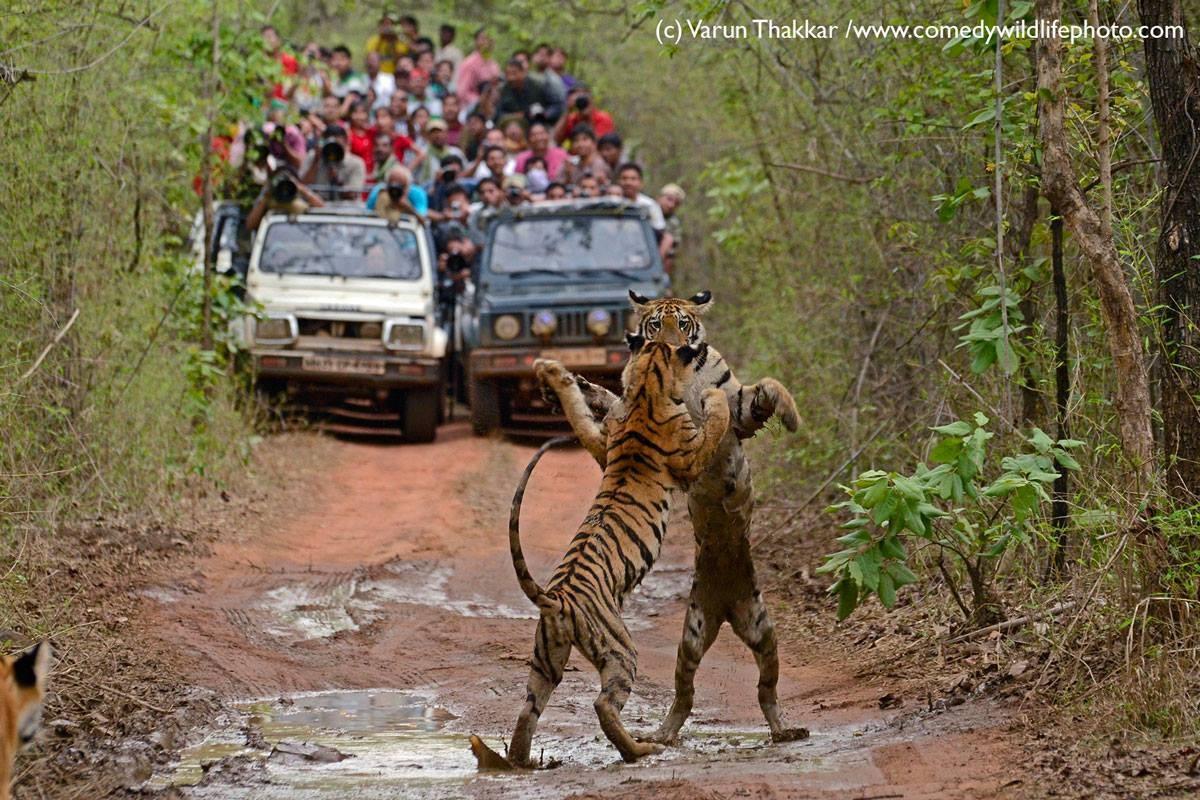 """""""Pera aí que estamos resolvendo uma parada"""" (Foto: Varun Thakkar)"""