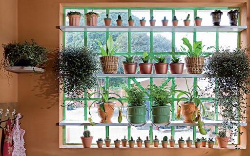 13 Ideias Para Ter Plantas Em Casa Casa E Jardim Paisagismo