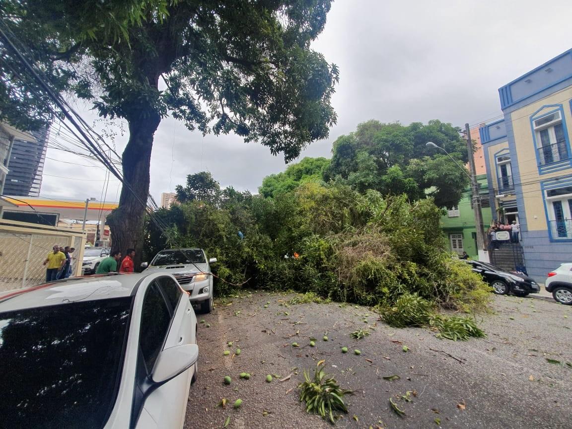 Árvore cai e derruba dois postes na Avenida Generalíssimo, em Belém - Notícias - Plantão Diário