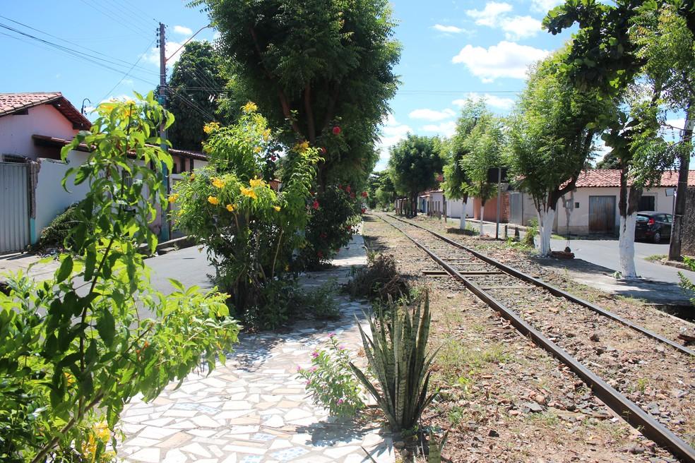 Moradores construíram calçadas e plantaram árvores próximo da linha do metrô. — Foto: Naftaly Nascimento