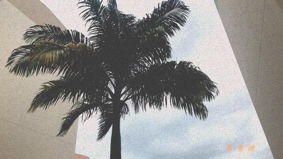 Grain Cam deixa fotos com aspecto granulado, comum em fotografias antigas — Foto: Reprodução/Rodrigo Fernandes