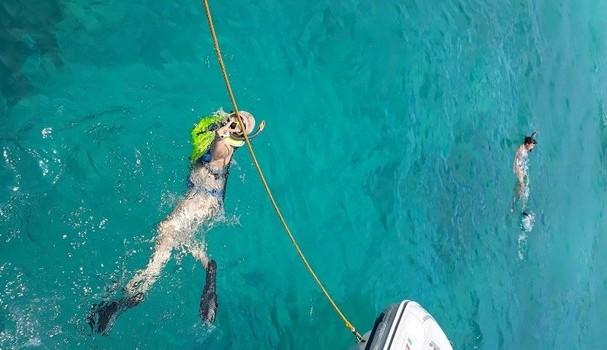 Snorkel em alto-mar (Foto: @lisalexandre)