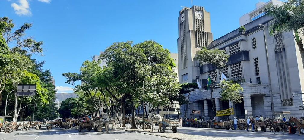 Carroceiros fecharam a Avenida Afonso Pena, no Centro de Belo Horizonte, nesta terça-feira (19) — Foto: Carlyle André/TV Globo