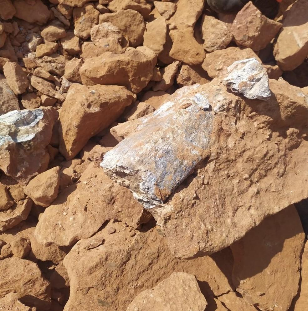 Osso principal estava colado a um bloco de arenito e foi extraído por peleontólogos em apenas uma hora — Foto: Entrevias/Divulgação