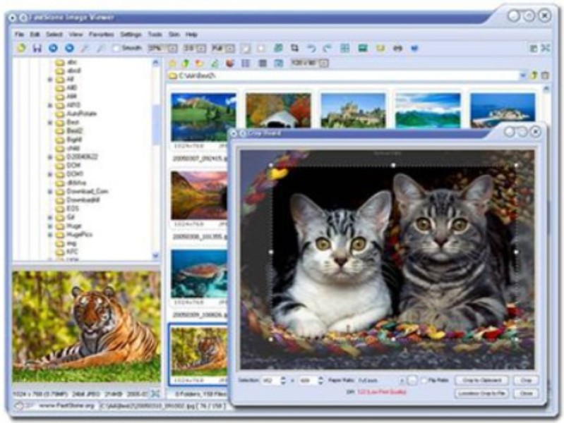 FastStone Image Viewer   Download   TechTudo