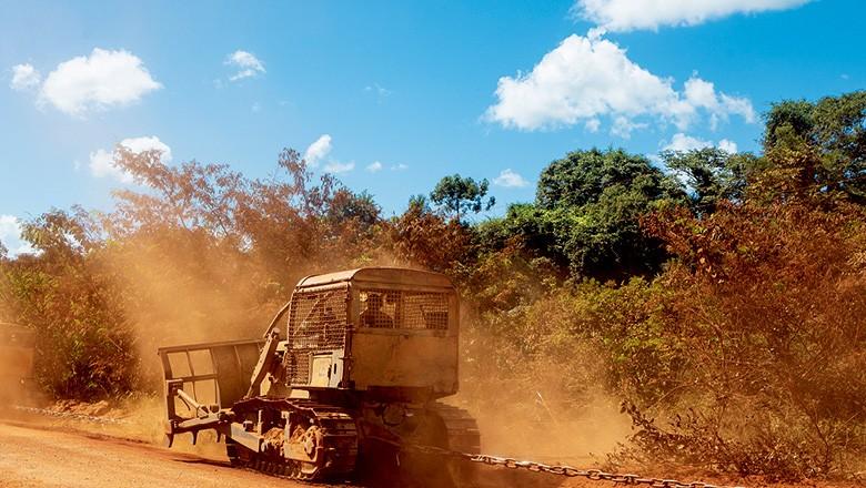 Máquina passa correntão para tirar vegetação à beira da rodovia (Foto: Fernando Martinho)