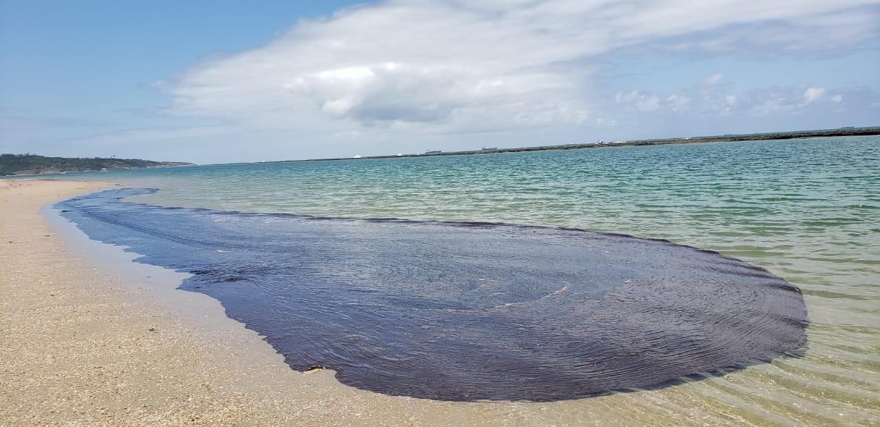 Marinha: mais de 600 toneladas de resíduos foram retiradas de praias nordestinas afetadas por óleo - Notícias - Plantão Diário