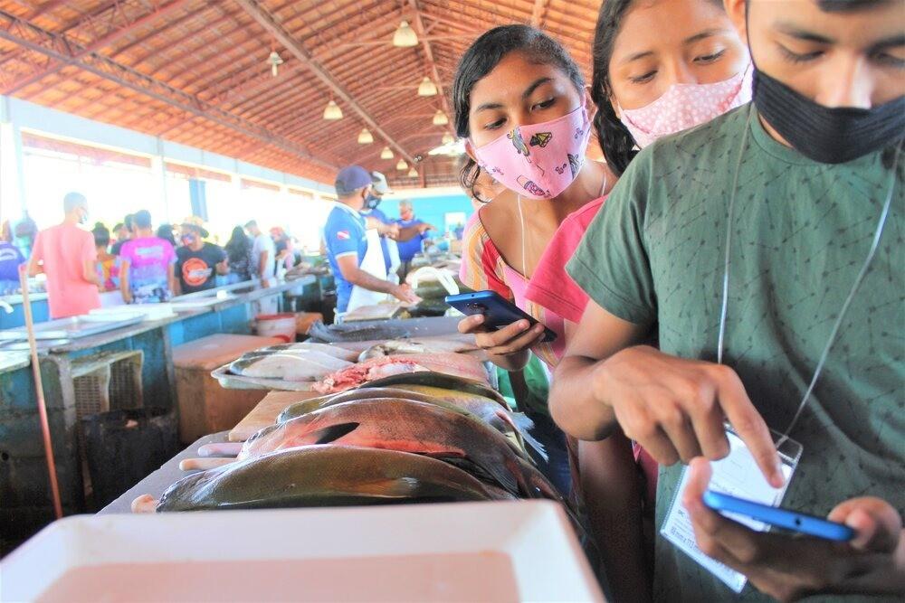 Estudantes monitoram com aplicativo de celular espécies de peixes migratórios na bacia Amazônica