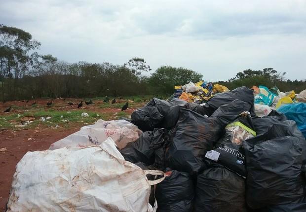 Na cidade de Dois Córregos, lixo e urubus a céu aberto  (Foto: TCE/Divulgação)