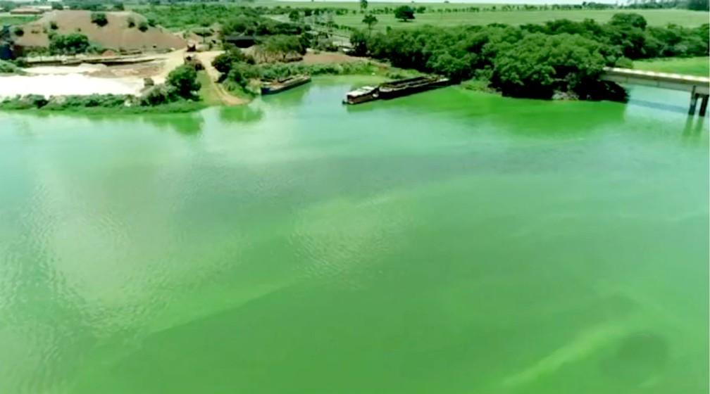 Cor esverdeada do Tietê em Sabino é causada pela eutrofização, o excesso de nutrientes nas águas — Foto: TV TEM/Reprodução