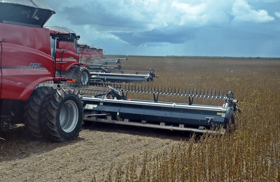 Ao todo, 20 máquinas participam da colheita diariamente  — Foto: André Schaun