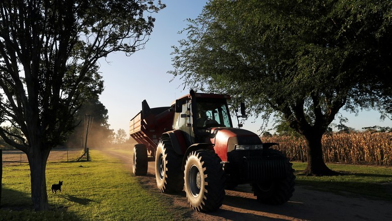 agricultura-graos-argentina (Foto: Reuters)