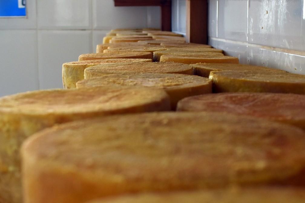 Maturação dá sabor e agrega valor aos queijos — Foto: Régis Melo