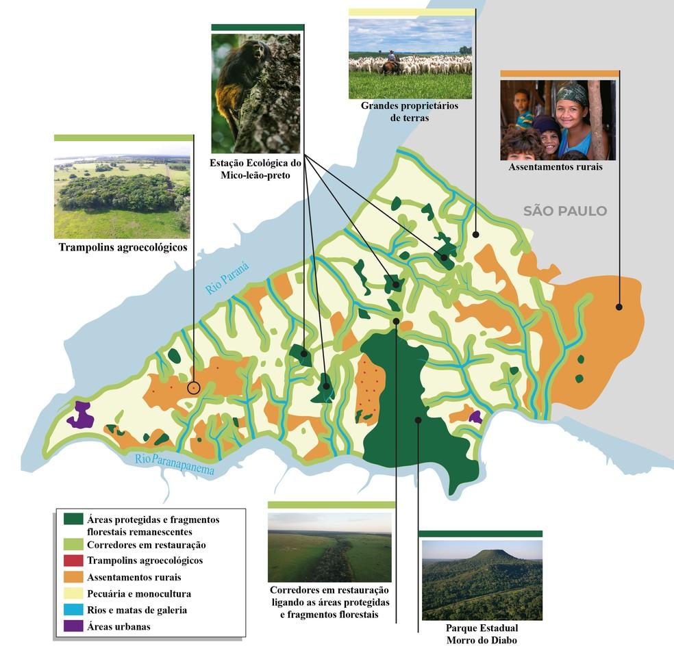 Mapa dos Sonhos direciona projeto de restauração da paisagem e florestas no Pontal do Paranapanema — Foto: Instituto de Pesquisas Ecológicas
