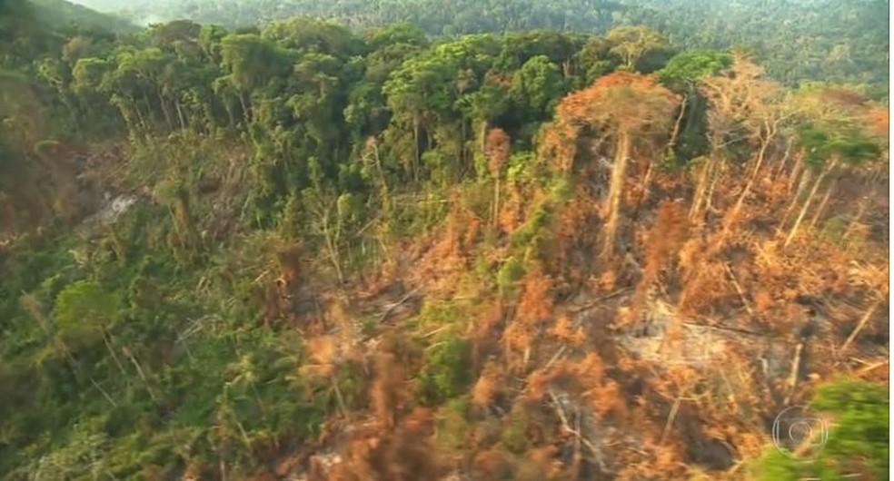 Normativa permitia exploração em terras indígenas — Foto: Reprodução/TV Globo