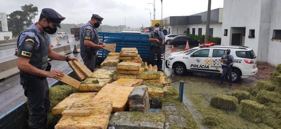 Mais de 4 mil tijolos de maconha foram apreendidos em Paulistânia — Foto: Polícia Rodoviária/Divulgação