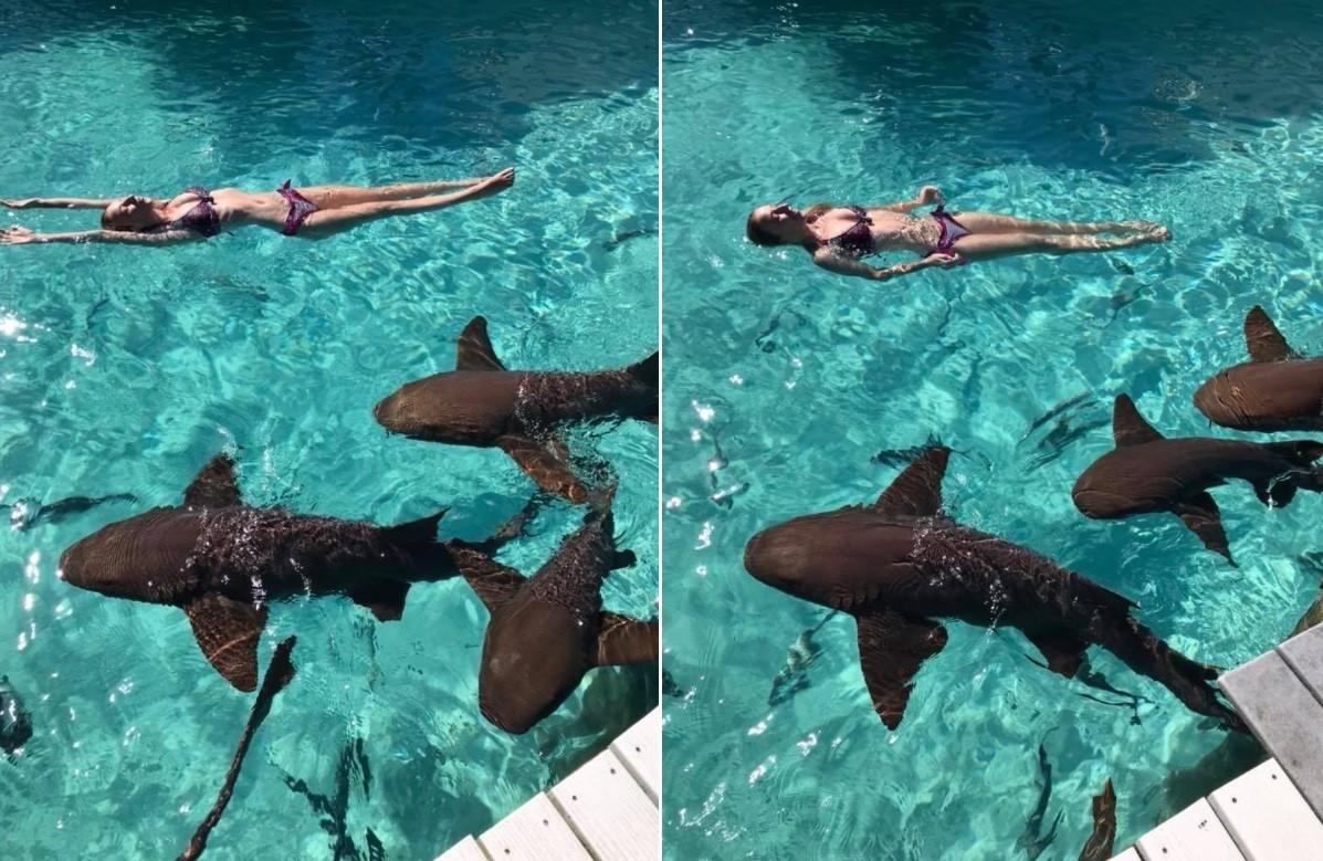 Mulher é mordida por tubarão durante lua de mel no Caribe — Vídeo