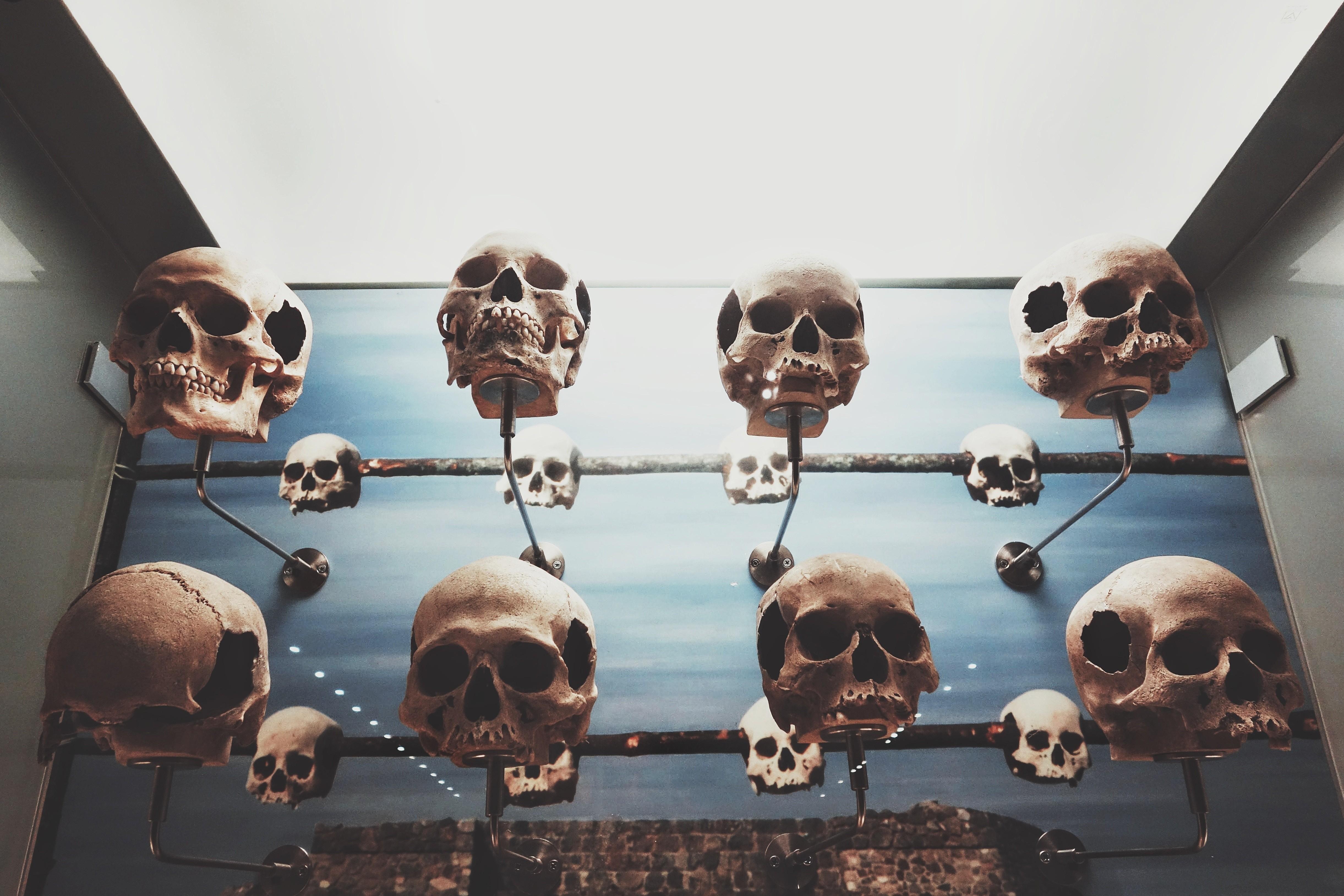 morte (Foto: Micaela Parente / Unsplash)