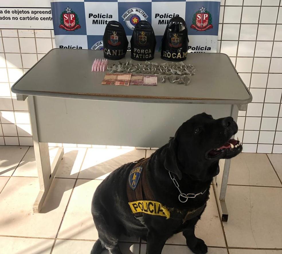 Canil atuou na ocorrência que apreendeu porções de maconha e cocaína em Tatuí (SP) — Foto: Polícia Militar/Divulgação