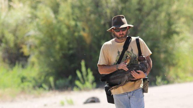 José Sarasola desafiou crenças populares para proteger a águia-cinzenta, uma das das mais ameaçadas da América do Sul (Foto: ARQUIVO PESSOAL)