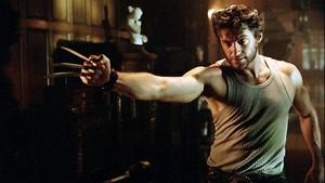 Um militar realiza um grande plano para erradicar de uma vez por todas os mutantes, forçando Magneto a se unir aos X-Men para combatê-lo.