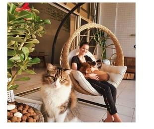 Conheça a casa de Camila Queiroz e Klebber Toledo (Reprodução)