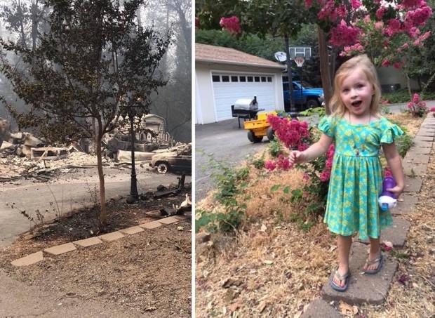 A casa da família antes e depois do fogo - e a pequena Olívia, 3, em frente (Foto: Reprodução/ Facebook)