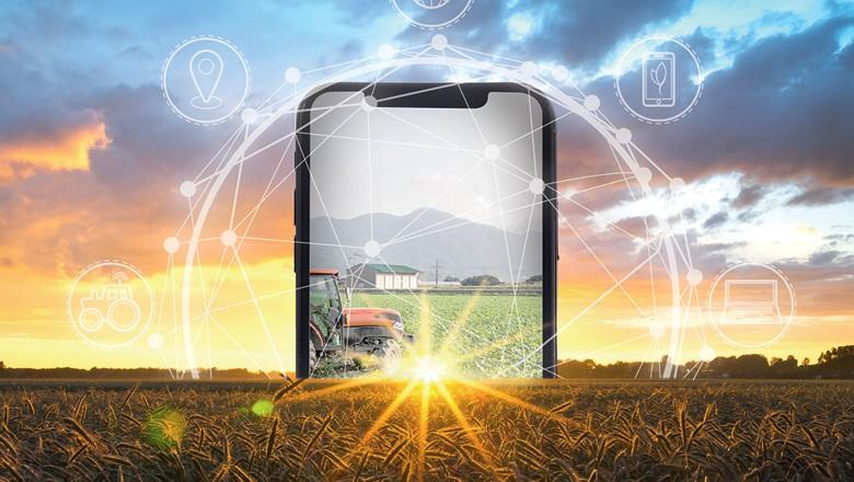 Operadoras de telecomunicações levam às fazendas soluções integradas de conectividade de equipamentos, sistemas e serviços (Foto: Getty images)