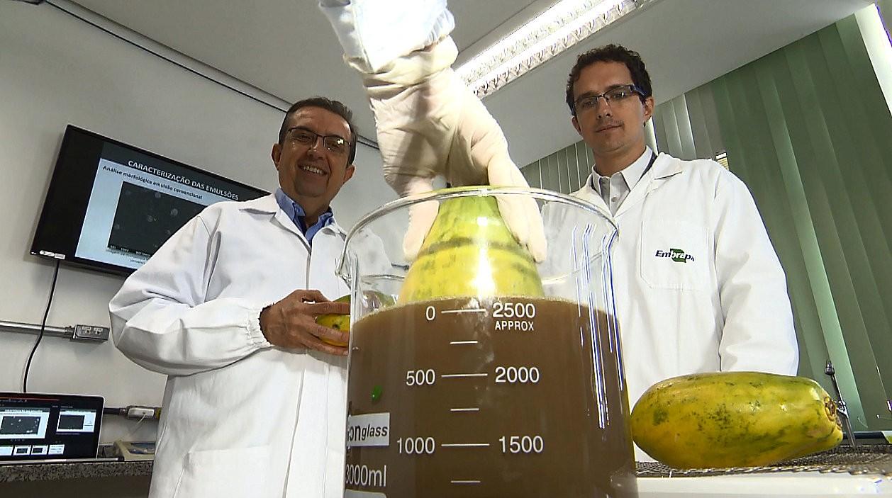 Técnica com cera de carnaúba aumenta a conservação das frutas - Notícias - Plantão Diário