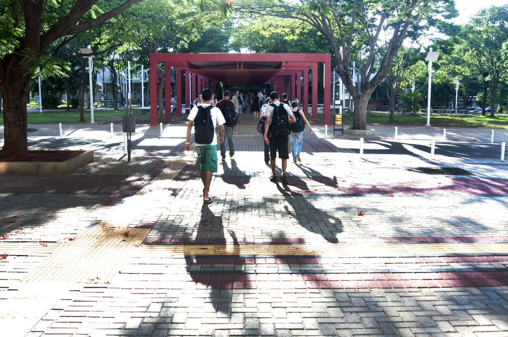 Estudantes no campus da Unicamp, antes da pandemia da Covid-19 — Foto: Antonio Scarpinetti / Unicamp