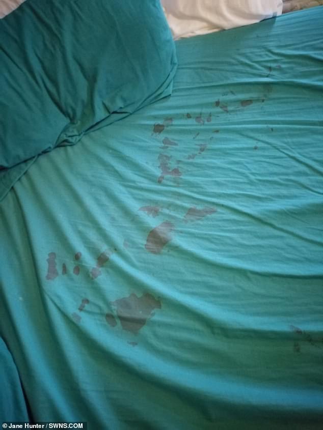 A cama do bebê tinha marcas de sangue e a mãe ficou em choque (Foto: Reprodução/ Daily Mail)