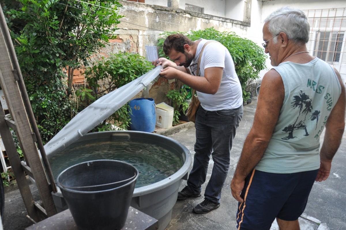 Campos, RJ, registra redução de casos de dengue