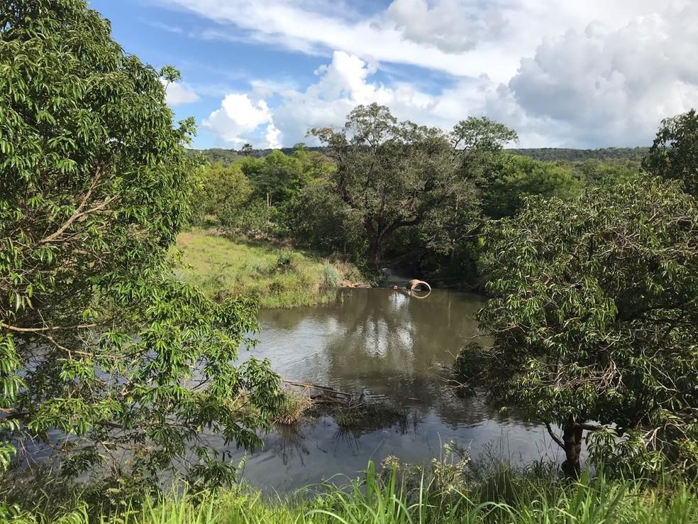 Córrego do Pipiripau, principal fonte de abastecimento de água das regiões de Planaltina e Sobradinho, no Distrito Federal (Foto: Letícia Carvalho/G1)