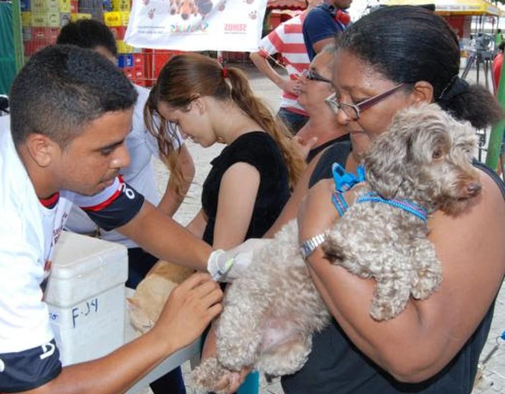 Vacinação de cães também está previsto para acontecer no 'Castramóvel' — Foto: Divulgação
