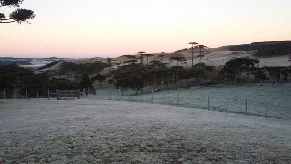 Manhã fria no Rio Grande do Sul (Foto: Anapio Pereira/Arquivo Pessoal)