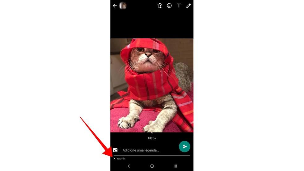 WhatsApp começa a mostrar nome do destinatário de fotos, vídeos e GIFs — Foto: Reprodução/Paulo Alves