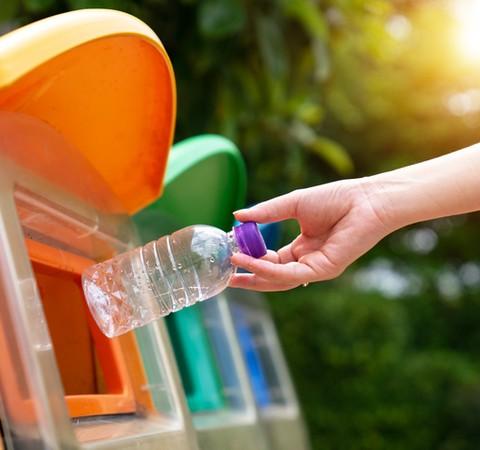 Lixo orgânico e inorgânico: saiba como separar