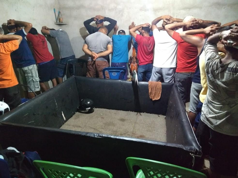 17 foram detidos no local que funcionava a rinha de galo — Foto: Divulgação