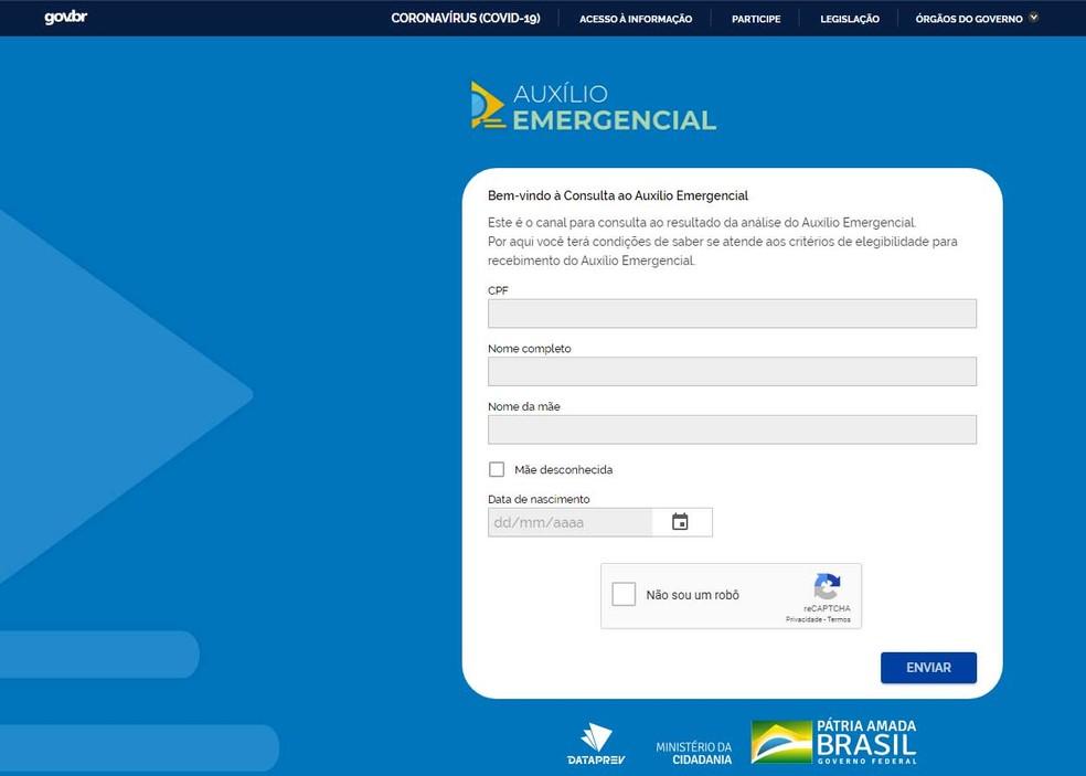 Site para consulta sobre situação do auxílio emergencial — Foto: Reprodução