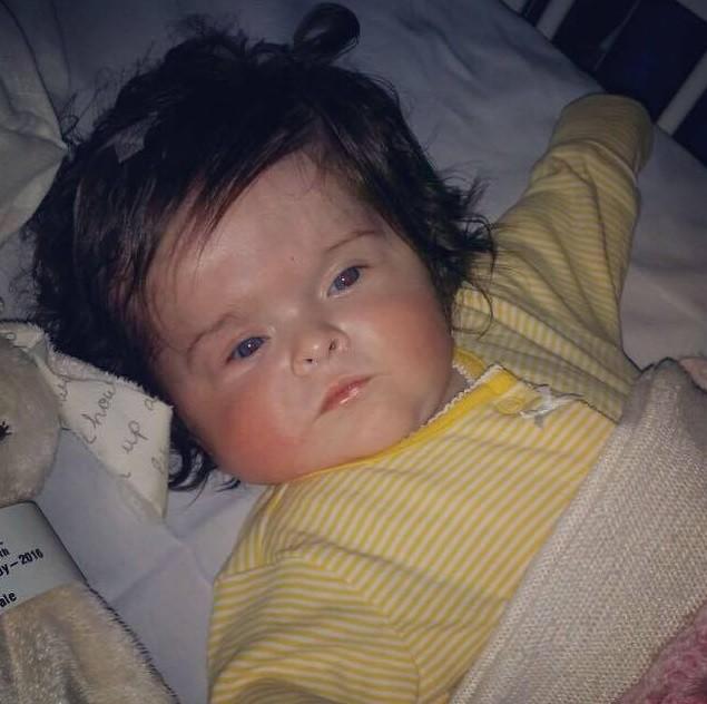 Aos 4 meses, Millie e sua 'peruca'