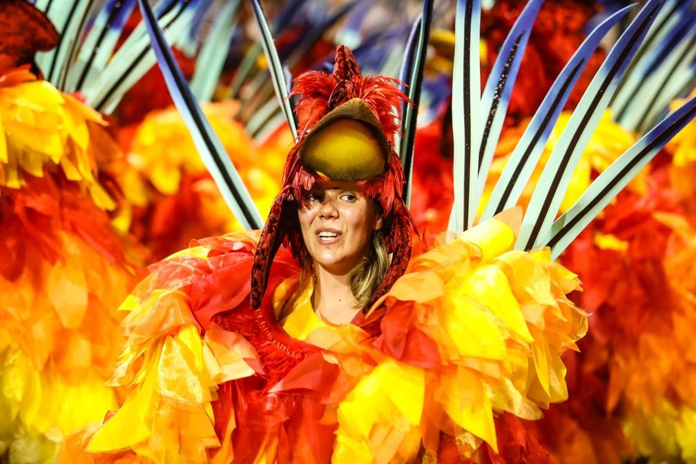 """Ala """"O despertar do campo"""", no desfile da Dragões da Real (Foto: Fábio Tito/G1)"""