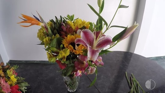 Designer floral ensina fazer arranjo com flores típicas da primavera