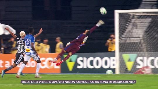 Torcedor do Botafogo agredido pela própria torcida ganha pacote de ingressos até o fim de 2020