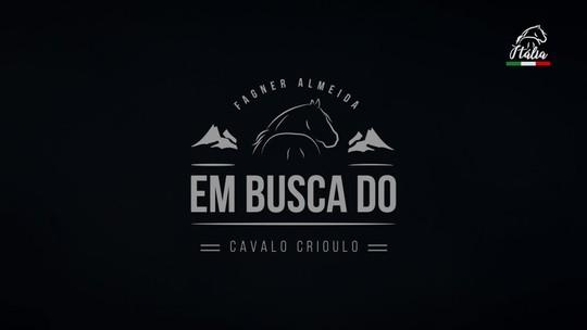 Documentário conta história do cavalo crioulo na Europa