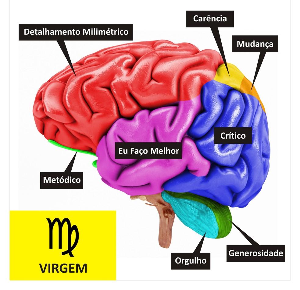 Cérebro de Virgem  (Foto: TV Globo )