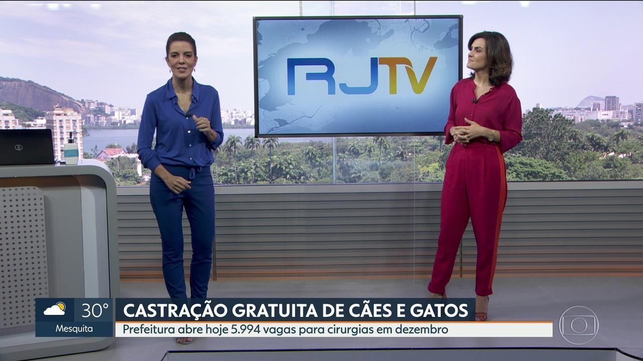 Prefeitura do Rio abre quase 6 mil vagas de castração de animais